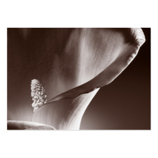 White Calla Lily Flower Black Background Large Business Card