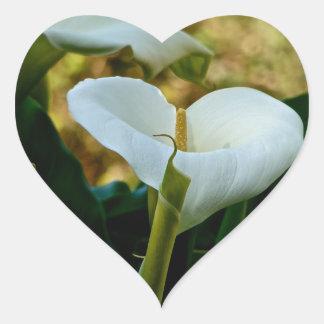 WHITE CALLA LILY HEART STICKER