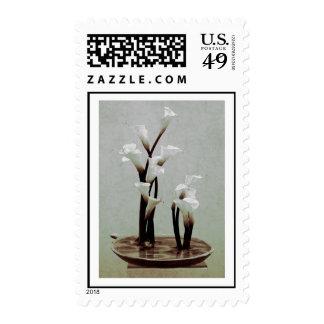 White Calla Lily Ikebana Stamps