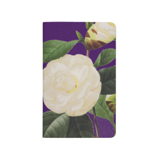 White Camellia, 1833 Journal