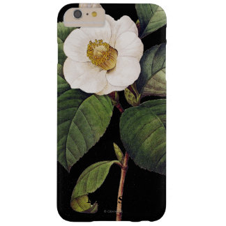 White Camellia Barely There iPhone 6 Plus Case