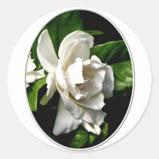 White Camellia Classic Round Sticker