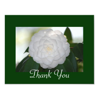 White Camellia Thank You Cards