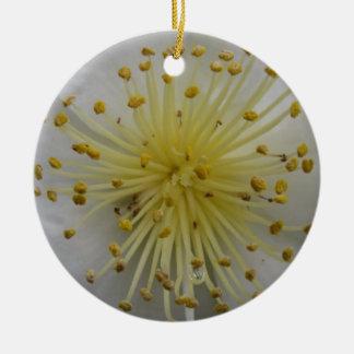 White Camilia Ornament