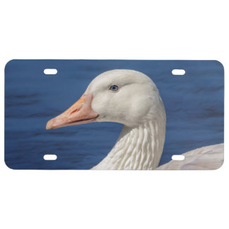 White Canadian Goose License Plate