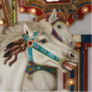 White carousel horse with blue bridle picture photo sculpture