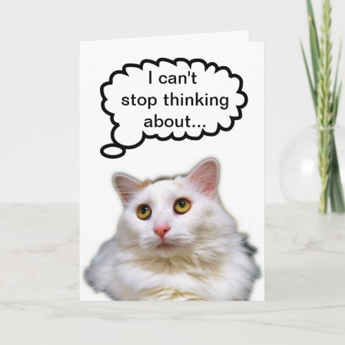 White Cat Belated Birthday Humor Card