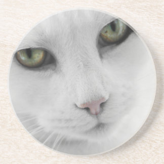 White Cat Coaster