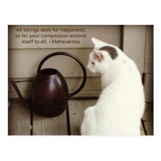 White Cat & Compassion Quote Postcard