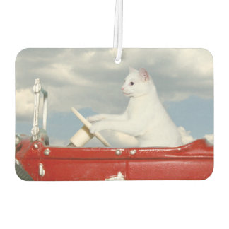 White cat drives a car car air freshener