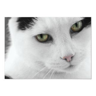 White Cat Invitation