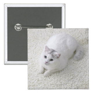 White cat looking up 2 inch square button