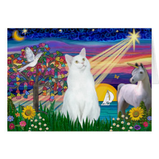 White Cat - Magical Night Card