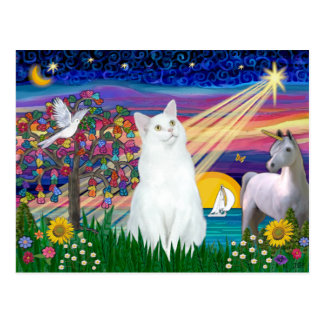 White Cat - Magical Night Postcard
