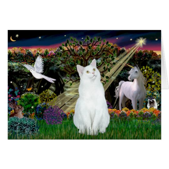 White Cat - Magical Woods Card