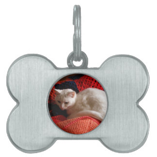 white Cat on orang red crochet knit blanket Pet ID Tag