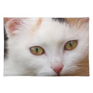 White cat place mats