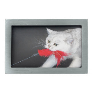 White cat playing pulling red toy rectangular belt buckle