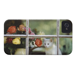 White cat sitting in window next to flowers iPhone 4 case