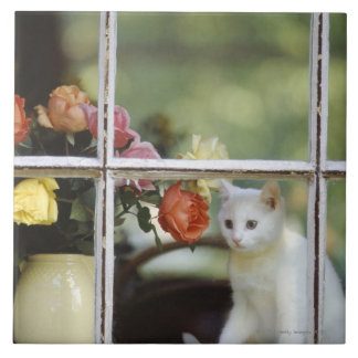 White cat sitting in window next to flowers large square tile