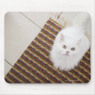 White cat sitting on mat mouse pad