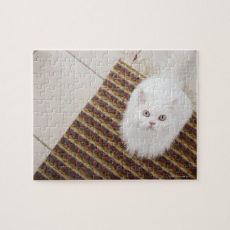White cat sitting on mat puzzles