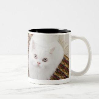 White cat sitting on mat Two-Tone coffee mug