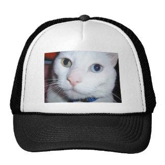 white cat trucker hat
