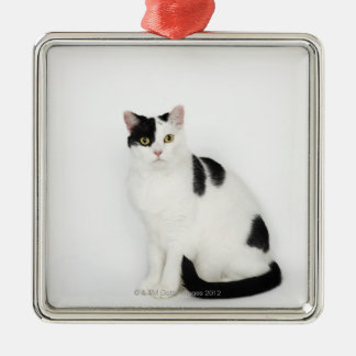 White cat with black spots square metal christmas ornament