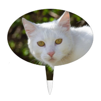 White Cat With Yellow Eyes Cake Topper
