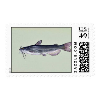 White catfish postage stamps