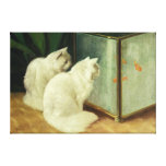 White Cats Watching Goldfish Stretched Canvas Print
