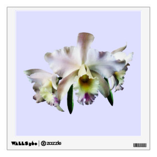 White Cattleya Orchids Room Graphic