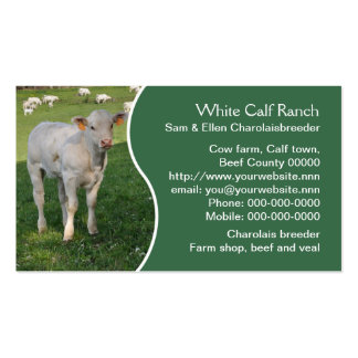 White charolais calf with green panel business card