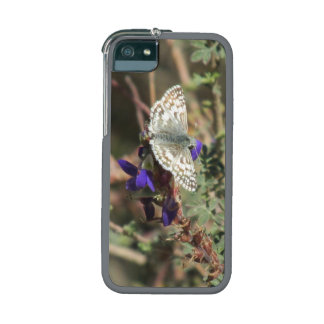 White Checkered Skipper Butterfly iPhone 5 Cover