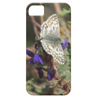 White Checkered Skipper Butterfly iPhone 5 Case