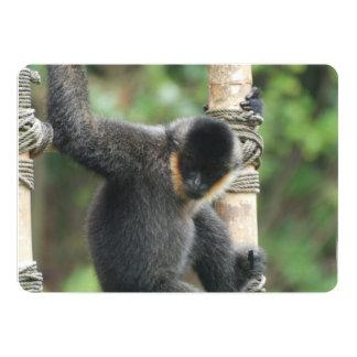 white-cheeked-capuchin-38 5x7 paper invitation card