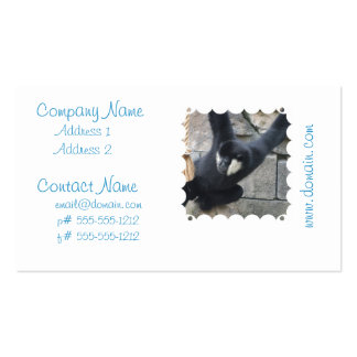 White Cheeked Capuchin Monkey Business Cards