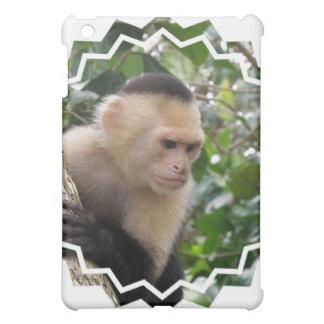 White Cheeked Capuchin Monkey iPad Case