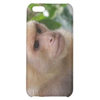 White Cheeked Capuchin Monkey iPhone 4 Case