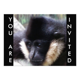 White Cheeked Gibbon Pastel Personalized Announcements