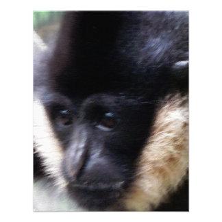White Cheeked Gibbon Pastel Custom Invitation