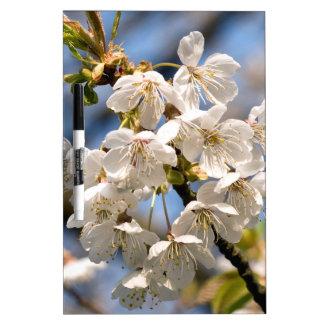 White Cherry bare OM Dry Erase Board