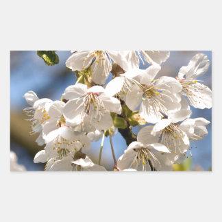 White Cherry bare OM Rectangular Sticker