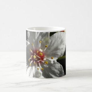 White Cherry Blossom Magic Mug
