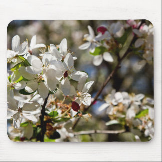 white cherry blossom mouse pad