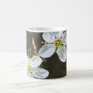 White cherry blossom coffee mug