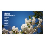 White Cherry Blossoms Against Blue Background Business Card