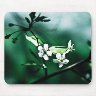White Cherry Blossoms Mouse Pad