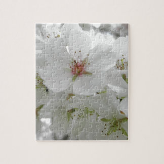 White Cherry Blossoms Sakura Flowers Floral Photo Jigsaw Puzzle